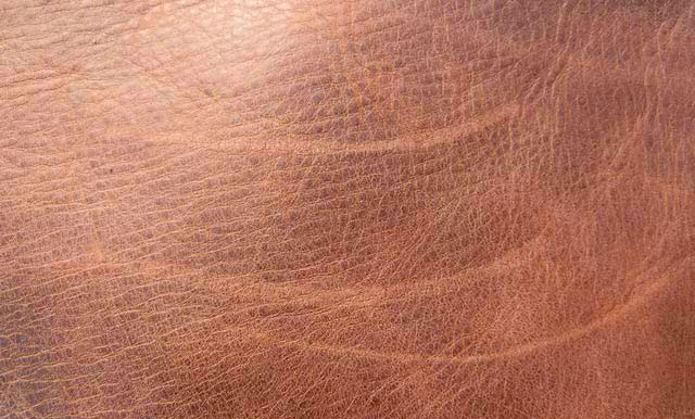 repairing scratches in leather